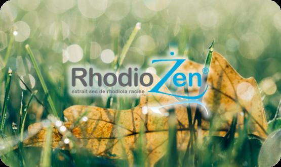 Rhodiozen un ingrédient unique composé d'une plante légendaire Rhodiola rosea L